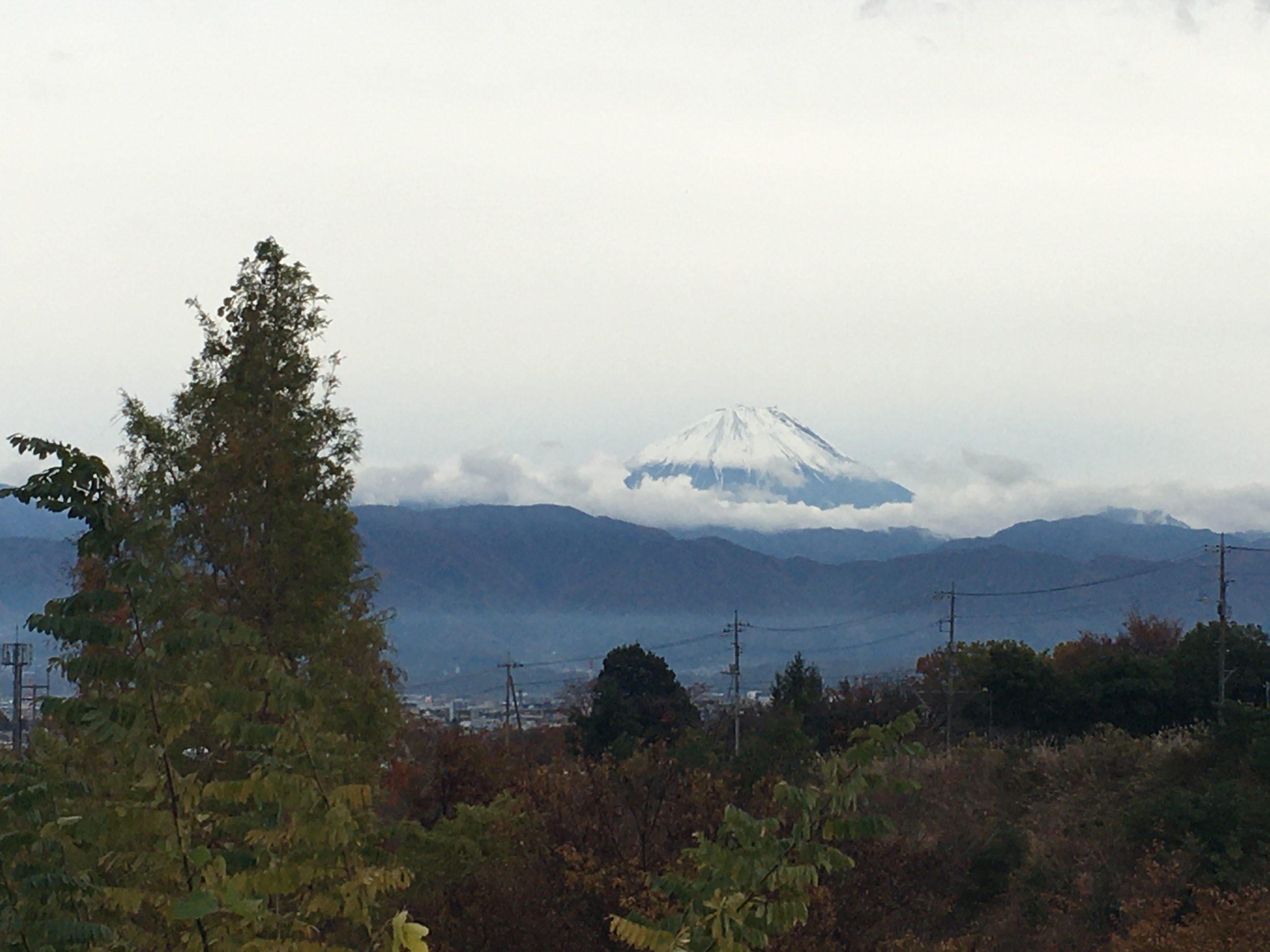 【富士山マラソン2019・感想】激坂で有名な大会!結果は?